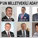 Ak Parti, CHP ve MHP'nin Sinop Adayları