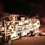 Son Dakika : Hayvan Yüklü Kamyonet İle Otomobille Çarpıştı: 1 Ölü, 3 Yaralı…