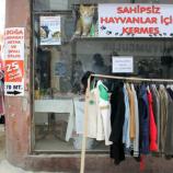 Sinop'ta Sokak Hayvanları İçin Kermes…….