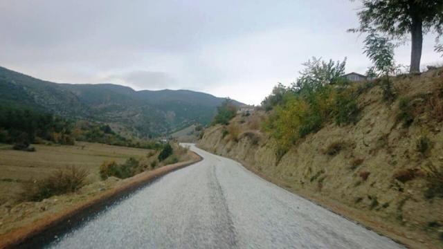 yol11