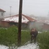 Boyabat Sarıağaççay Yaylasına Bu Mevsimde Dolu Yağdı…