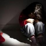 Komşularının 4 Yaşındaki Kızını Ahırda İstismar Eden Sapığa 12 Yıl Ceza Verildi…..