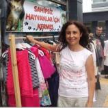 Sinop'ta sokak hayvanları yararına kermes…