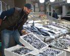 Hava Şartları Balık Fiyatlarını Yükseltti…