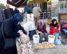 Boyabat'ta Aralık Ayında Taze Kanlıca Mantarı, Fiyatı Sudan Ucuz…