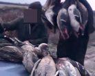 Doğada Katliam Yapan Kaçak Avcılara, 22.595 TL Ceza Kesildi….