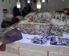 Sinop'ta 2 bin liralık Balık Alıcı Bekliyor….