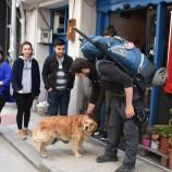 Sinop'ta Mola Verdi, İtalya'dan Yürüyerek Çin'e Gidiyor…