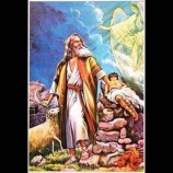 Erol Koptagel Yazdı; Hangisini Düzelteyim?….