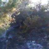 Mezarlıkta Yangın.. (Videolu Haber) …