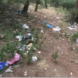 Boyabat'ın ortasındaki çöp dolu ağaçlık alan…