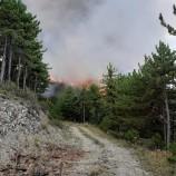 Boyabat'ta Orman Yangınında Son Durum, Ciğerlerimiz Yanıyor, (Videolu Haber)…