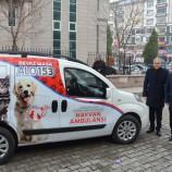 Belediyeden Sokak Köpekleri İle İlgili Açıklama….
