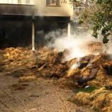 Köyde Korkutan Yangın, Samanlar Alev Aldı…