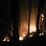 Erfelek Şelale Yolunda Yangın, (Videolu Haber)…