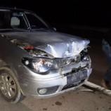 Otomobil Gece Yaban Domuzuna Çarptı…