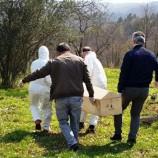 Erfelek'te Corona Virüsü Sonucu Hayatını Kaybeden Vatandaş Bugün Toprağa Verildi.