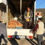 Boyabat Belediye Başkanı Şefik Çakıcı, Karantina Köyüne, Bir Kamyon Dolusu Ekmekle Girdi…