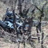 Köyde Traktör 30 Metrelik Uçuruma Yuvarlandı, Dede Öldü, Torun Ağır Yaralı…