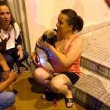 Köpek Kavgası Karakolda Son Buldu…