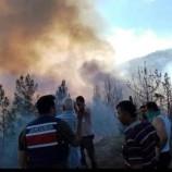 Durağan'da Orman Yangın Devam Ediyor!!!