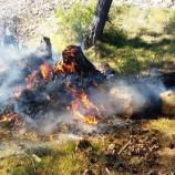Boyabat'ta Orman Yangını Erken Müdahale İle Söndürüldü….