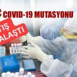 """Mustasyonlu Virüs"""" Vakalar Artıyor, 17'si Mutasyonlu Olmak Üzere Toplam 25 Vaka…"""