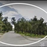 Boyabat İYİ Parti İlçe Başkanı Mor'dan Orman Tepkisi ; İmara Açılacak mı?