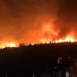 10 Ayrı yangına Müdahale Eden Boyabat Orman Söndürme Ekibi Çalışmalara Devam Ediyor…